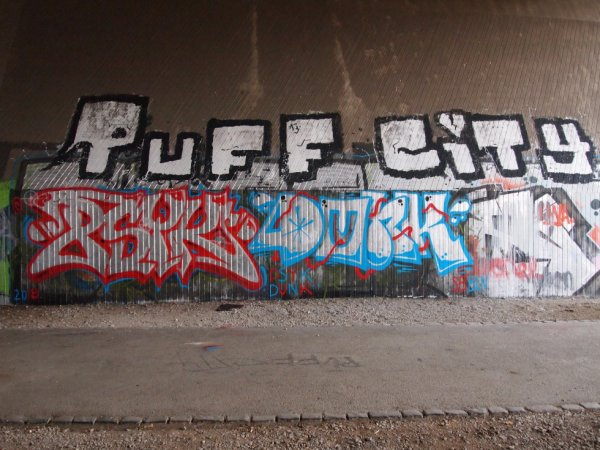 PUFF CITY PSYK DUNK