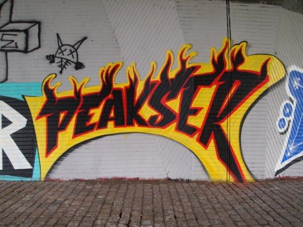 PEAKSER