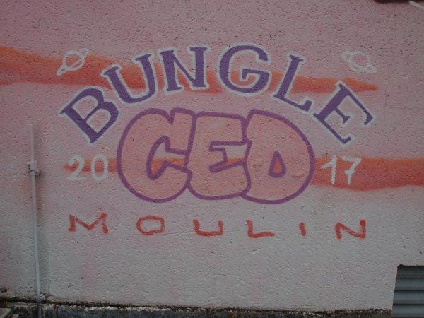 BUNGLE CED