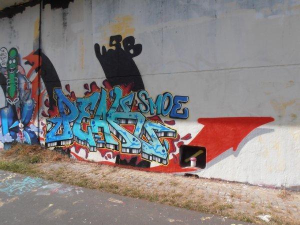 PEAK SMOE 83 Rip