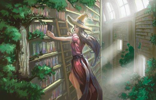 † ...Ma bibliothèque... †