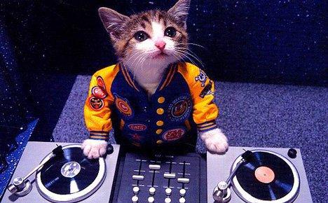 BLOC MUSIQUE !   AVEC DJ   KAT!