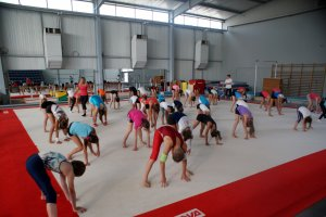Stage UFOLEP Grs/Gym et Multi sports