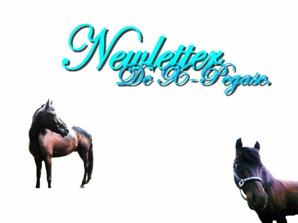 Newletter & Partenaire.