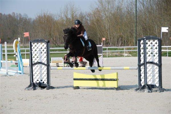 Concours du 25 mars 2012