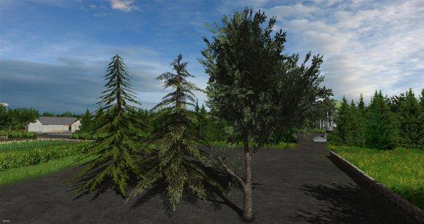 Diférent arbres