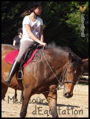 Mes cours d'équitation