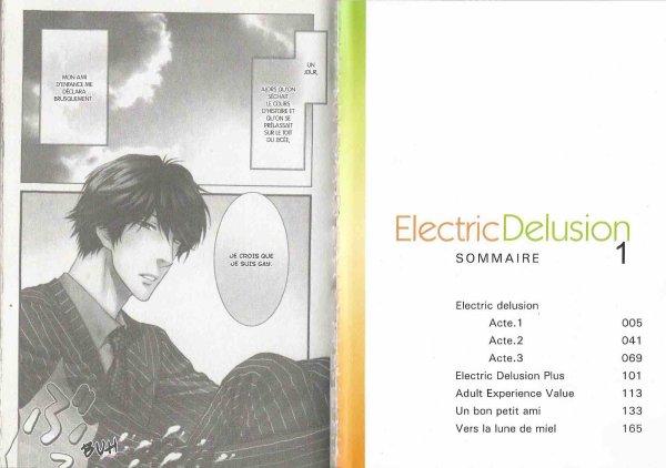Electrique Delusion 2