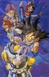 Photo de x-fan-2-dragon-ball-z-x
