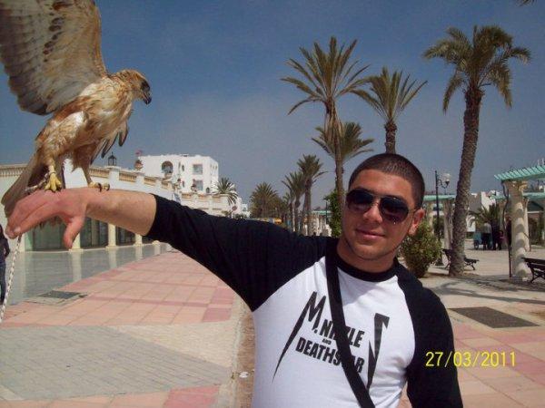 me & a falcon