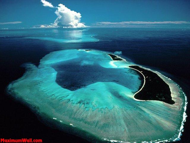 Blog de Ocean-life84