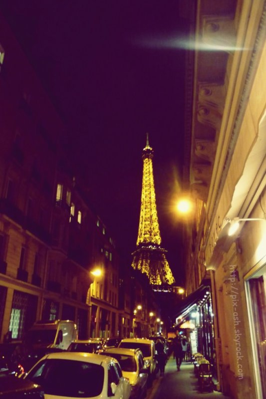 Eiffel by night 4