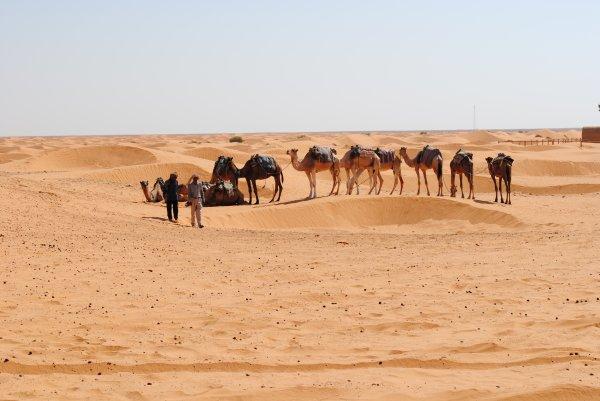 La Tunisie<3<3