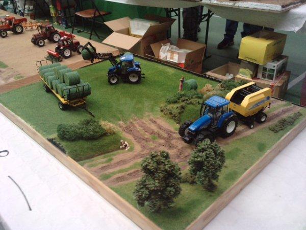 Expo miniature agricole PLM 2011