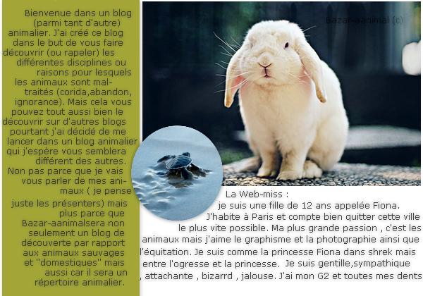 BIENVENUE | article 1
