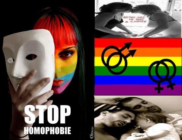 """Commentaires révoltants ! Contres l'homophobie ! + Vidéo """"Imagine un monde ou être gay est normal et être hétéro est interdit."""""""