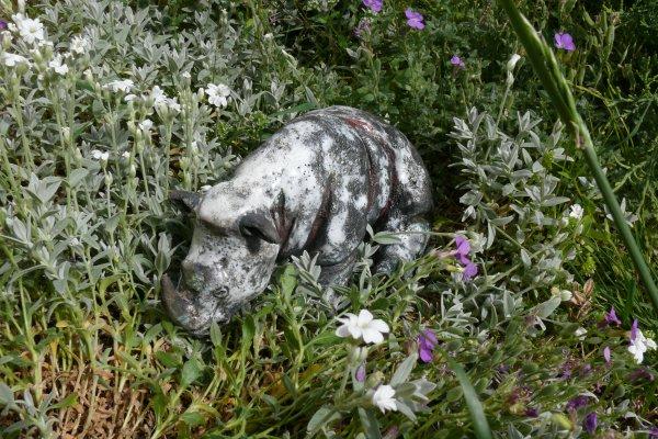 un Rhino dans la cambrousse