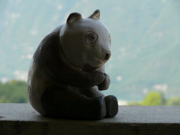 PANDA cuisson RAKU
