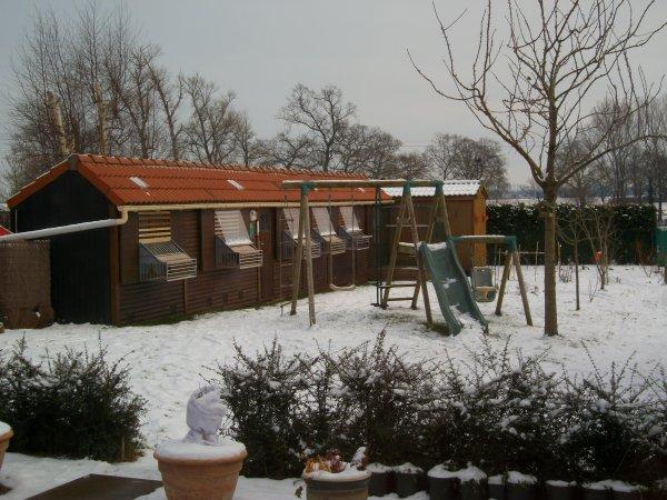 Mes pigeonniers de jeux sous la neige.