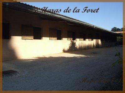 ★☆★Le Haras de la Foret☆★☆