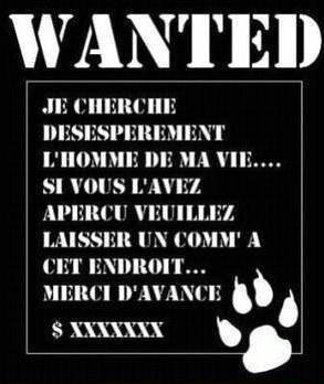 mec recherche un mec Angers