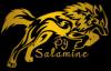 Graph-Salamine