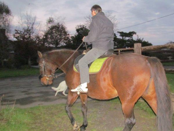 p'tit ballade a cheval