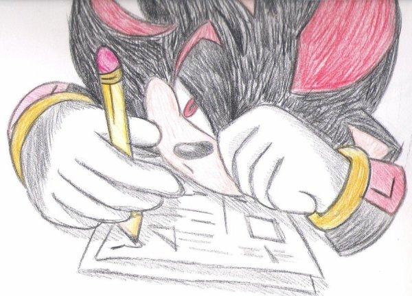 Fiche de présentation fic 1 - Sonic et la bête