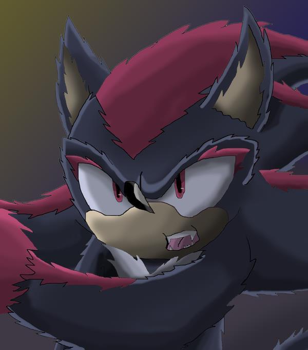 Fic 1 - Sonic et la Bête - Chapitre 1 : Le sauvetage