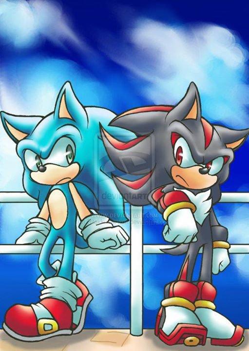 Fic 1 - Sonic et la Bête - Chapitre 2 : La rencontre