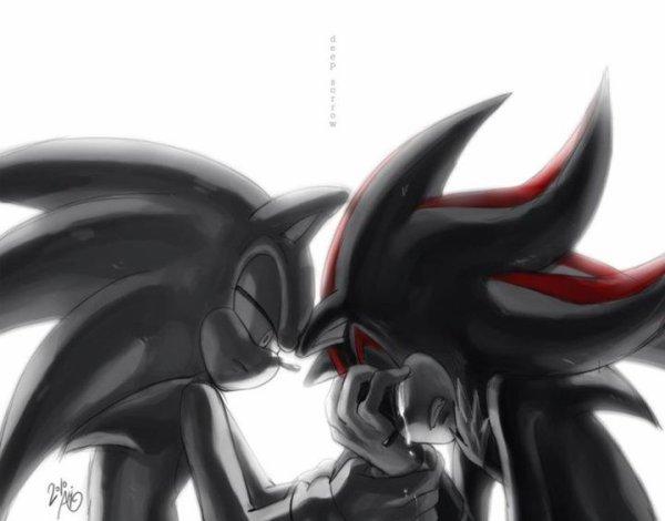 Fic 1 - Sonic et la Bête - Chapitre 3 : Un rêve qui se réalisera peut-être jamais
