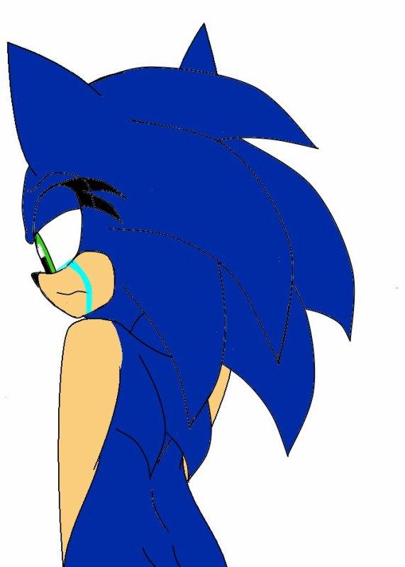 Fic 3 : Sonic Girl : Chapitre 4 : Les larmes de Sonic