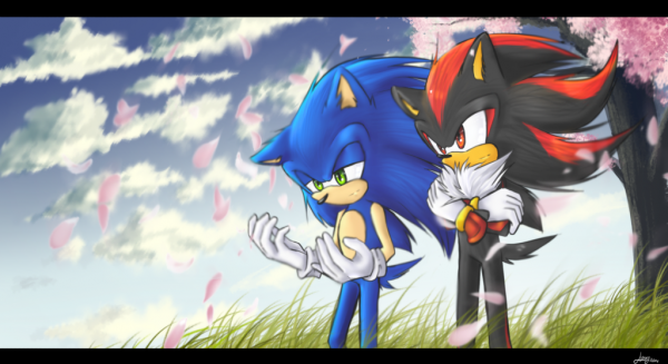 Fic 3 : Sonic Girl : Chapitre 6 : Sonic retrouve son corps