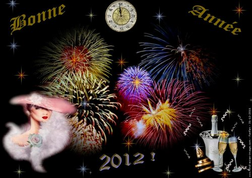 BONNE ANNEE 2012  !!!!