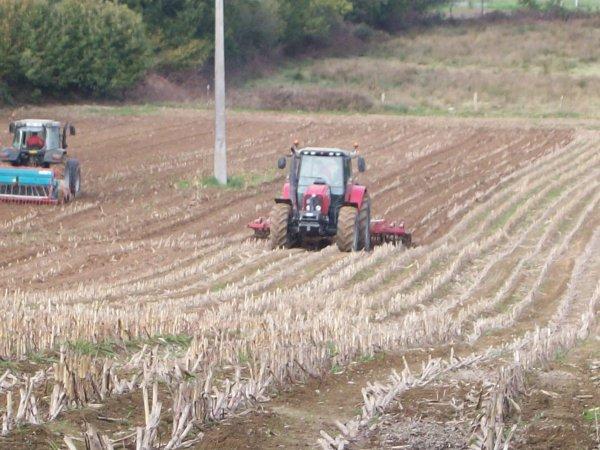 semis 2010 de blé