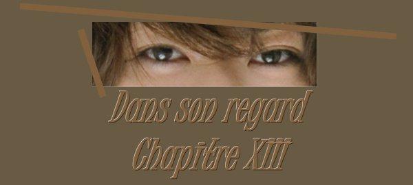 Dans son regard : Chapitre XIII