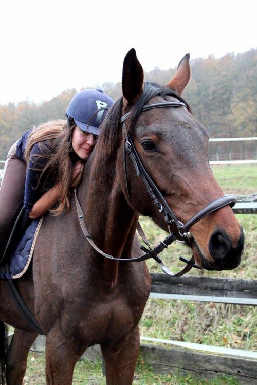 On ne renonce jamais aux chevaux,& vous savez pourquoi?