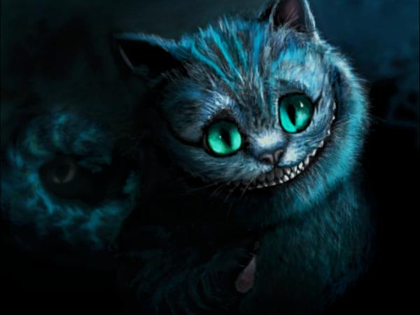 Cheshire ♥