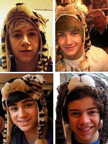 Liam Payne, Niall Horan, Zayn Malik, Harry Styles.