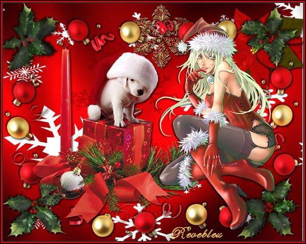 Joyeux noël & Bonne année 2011