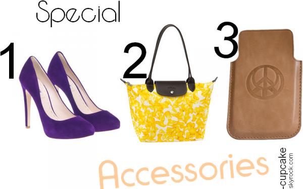 #2 Special Accessories