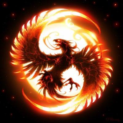 Comme un phoenix qui renaît de ces cendres