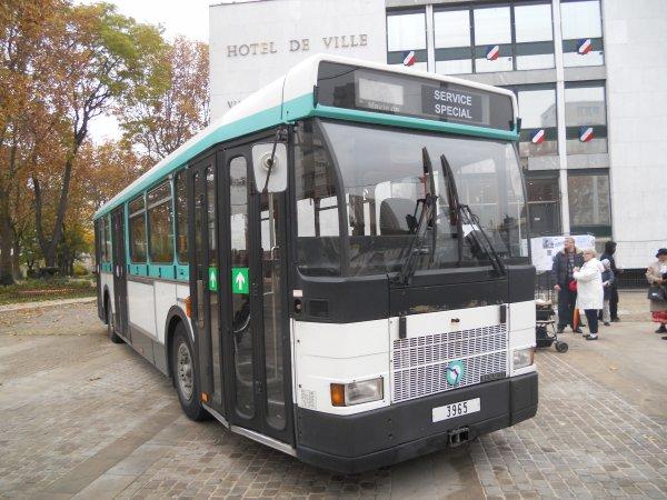 Quelques vieux bus