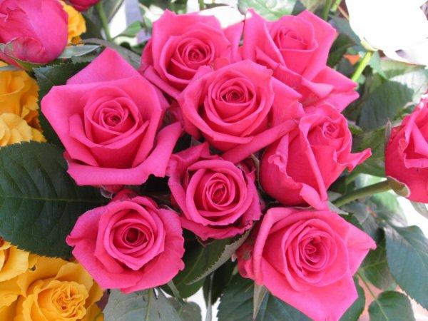 Ce Beau Bouquet De Roses Pour Mon Amie Sabine Kilou086