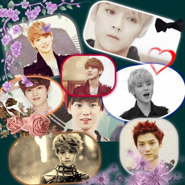 luhan montage