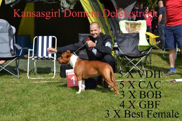 VDH/DCBT CH kansasgirl Domein Deleiestreek