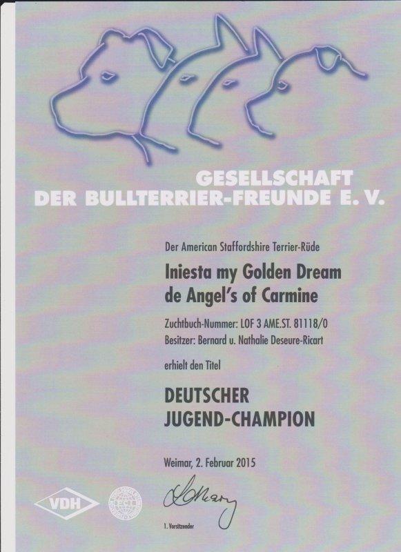 Deutscher Jugend champion VDH iniesta my golden Dream Domein Deleiestreek