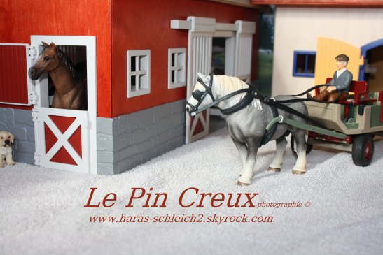 Welcom to the Pin-Creux