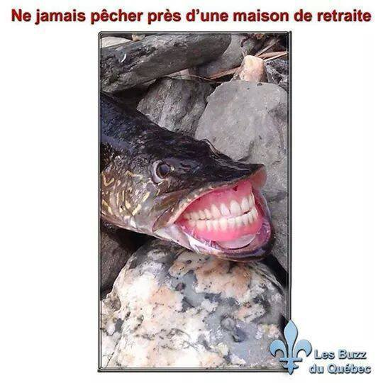 ATTENTION  AMIE PECHEUR