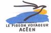 le-pigeon-voyageur-aceen